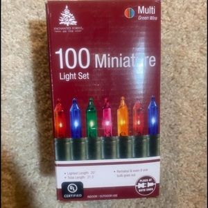100xt Multicolor Christmas Lights